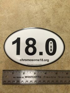 C18 Oval Magnetic Decal